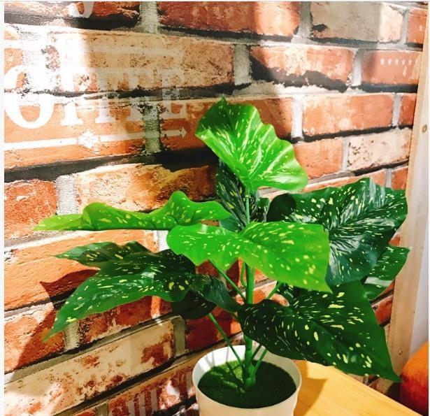 Hoa Lá Giả Ở Quy Nhơn HTQ011